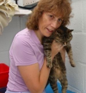 notizie animali,gatto tornato,gatto,lynx,patricia charnet,gatto ritrovato,gatto ritrovato dopo dieci anni,gatto ritrovato dopo 10 anni